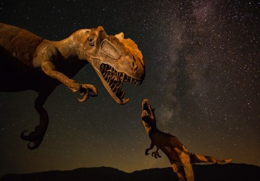 Dinosaurs' Numbers Were Declining Long Before Asteroid Strike